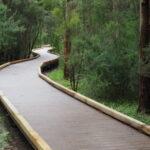 Эко дорожка деревянная