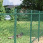 Забор рабица с покрытием пвх