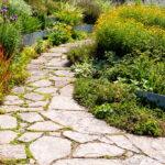 Садовая дорожка дикий камень